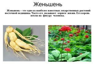 Женьшень Женьшень – это одно из наиболее известных лекарственных растений вос