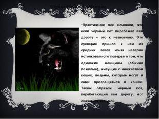 Чёрные коты – к невезению Практически все слышали, что если чёрный кот перебе