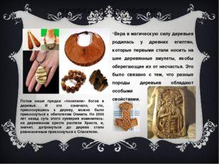 МАГИЧЕСКАЯ СИЛА ДЕРЕВЬЕВ Вера в магическую силу деревьев родилась у древних е