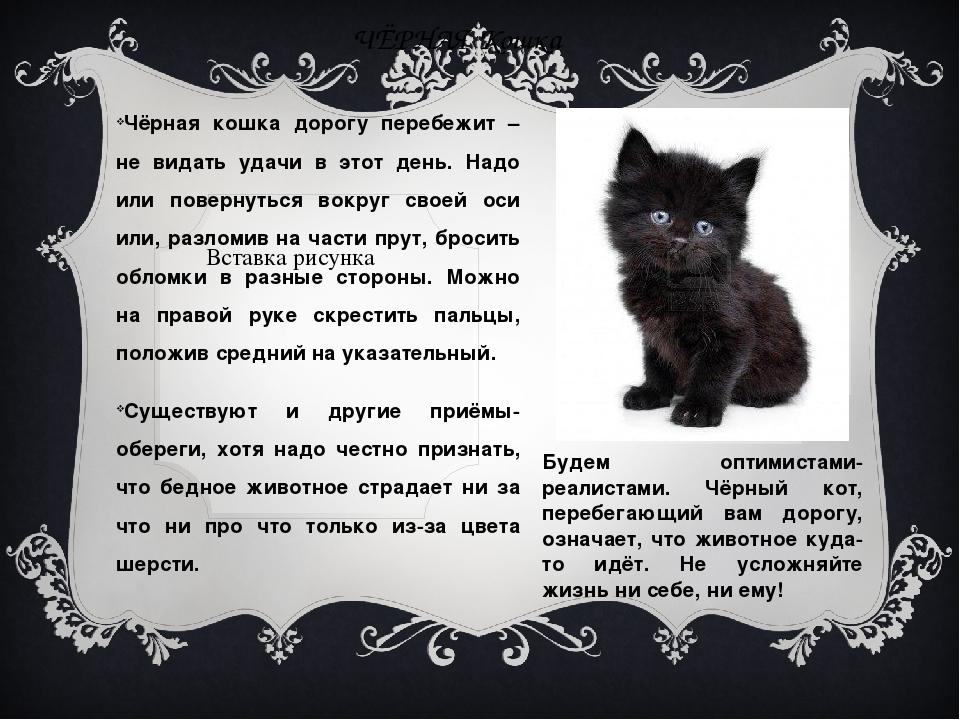 ЧЁРНАЯ Кошка Чёрная кошка дорогу перебежит – не видать удачи в этот день. Над...