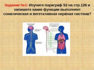 Задание №1: Изучите параграф 52 на стр.126 и запишите какие функции выполняет