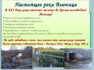 Настоящее реки Вьюница В XXI веке река «течет» только во время половодья! Поч