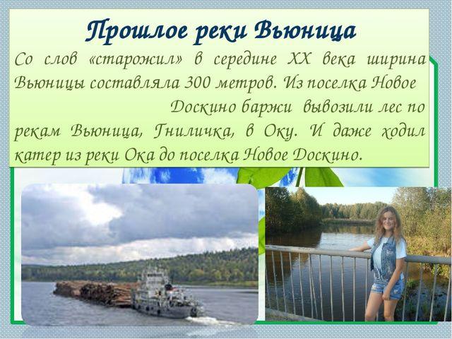 Прошлое реки Вьюница Со слов «старожил» в середине XX века ширина Вьюницы сос...