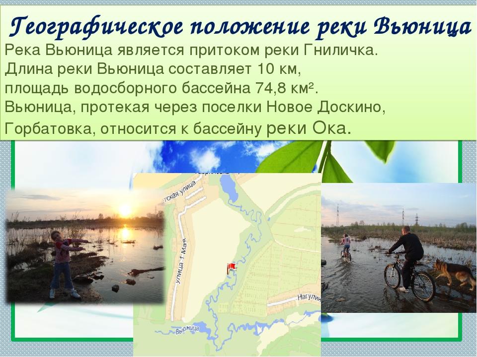 Географическое положение реки Вьюница Река Вьюница является притоком реки Гни...
