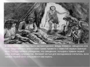 В некоторых обществах было распространено: вождь племени, священник или иной