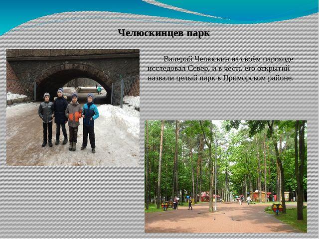 Челюскинцев парк Валерий Челюскин на своём пароходе исследовал Север, и в че...