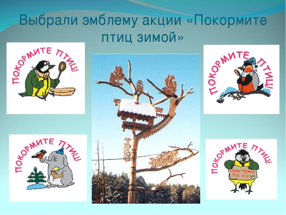 Выбрали эмблему акции «Покормите птиц зимой»