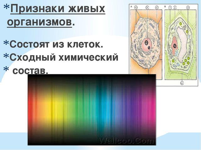 Признаки живых организмов. Состоят из клеток. Сходный химический состав.