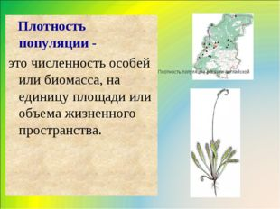 Плотность популяции - это численность особей или биомасса, на единицу площад