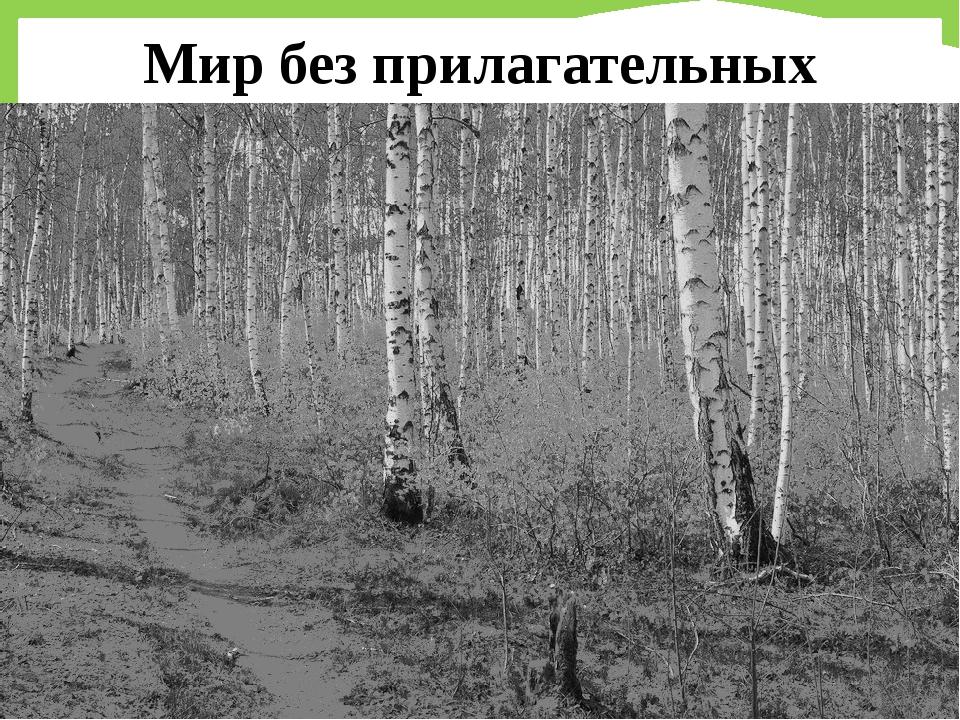 Мир без прилагательных FokinaLida.75@mail.ru