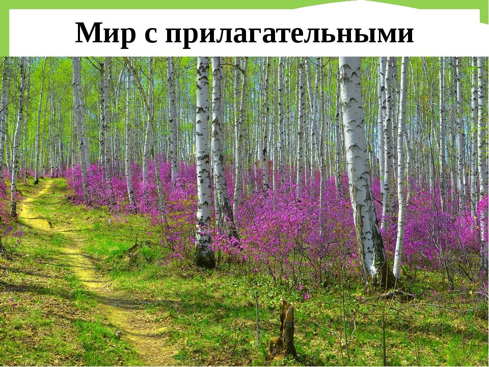Мир с прилагательными FokinaLida.75@mail.ru