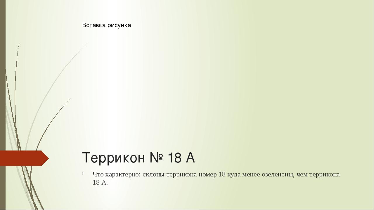 Террикон № 18 А Что характерно: склоны террикона номер 18 куда менее озеленен...