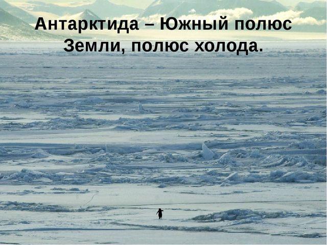 Антарктида – Южный полюс Земли, полюс холода.