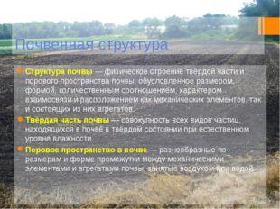 Почвенная структура Структура почвы— физическое строение твёрдой части и пор