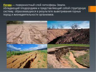 Почва— поверхностный слойлитосферыЗемли, обладающийплодородиеми представ