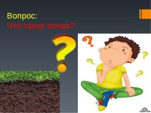 Вопрос: Что такое почва?