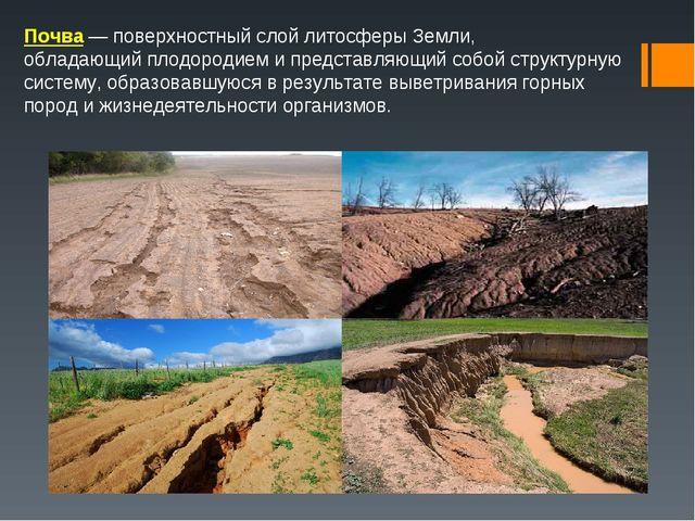 Почва— поверхностный слойлитосферыЗемли, обладающийплодородиеми представ...