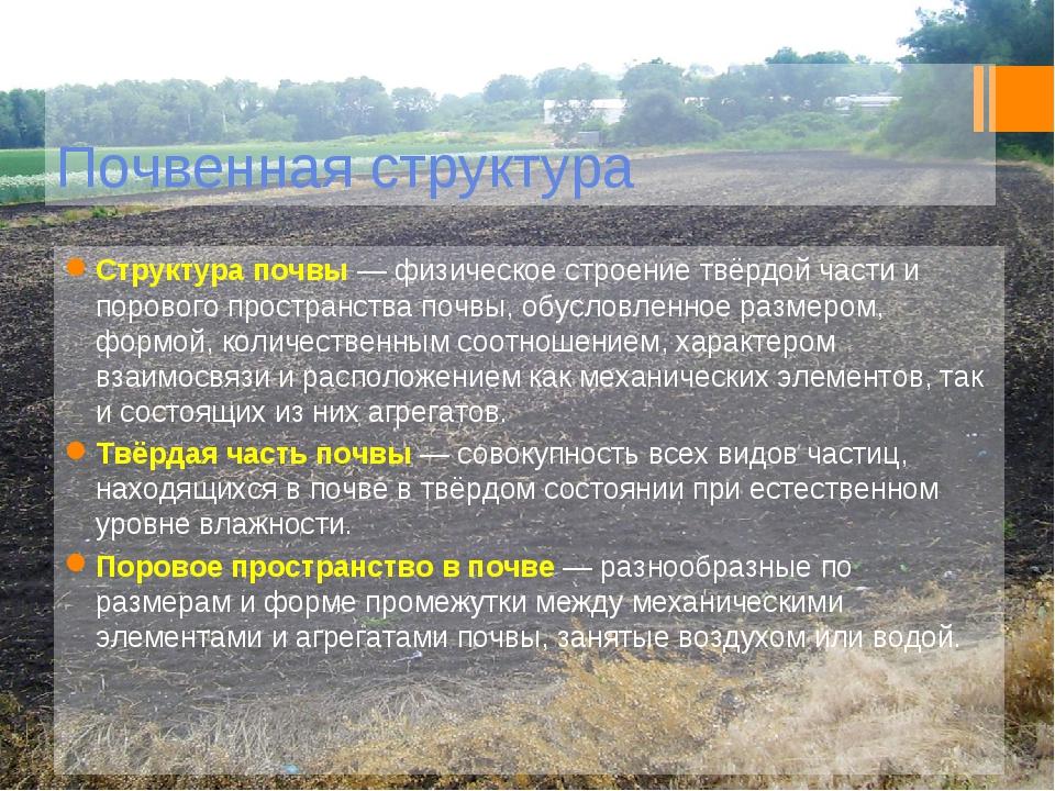 Почвенная структура Структура почвы— физическое строение твёрдой части и пор...