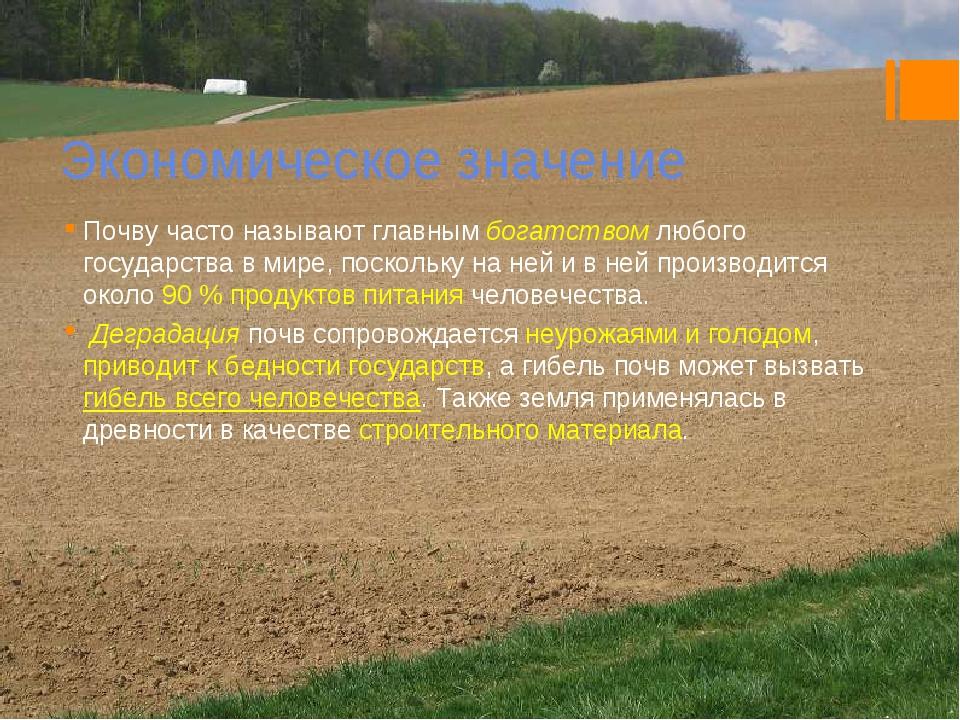 Экономическое значение Почву часто называют главным богатством любого государ...