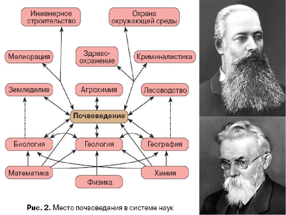 История изучения Описанию свойств почв и их классификации человек уделял вним...