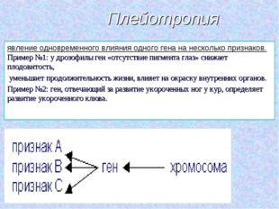 Плейотропия явление одновременного влияния одного гена на несколько признаков
