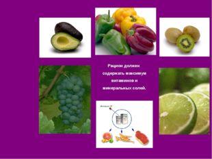 Рацион должен содержать максимум витаминов и минеральных солей.