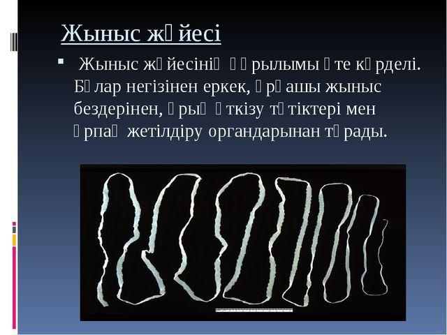 Жыныс жүйесі Жыныс жүйесініңқұрылымы өте күрделі. Бұлар негізінен еркек, ұ...