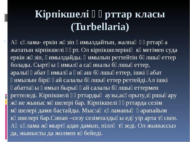 Кірпікшелі құрттар класы (Turbellaria) Ақ сұлама- еркін жүзіп қимылдайтын, жа...