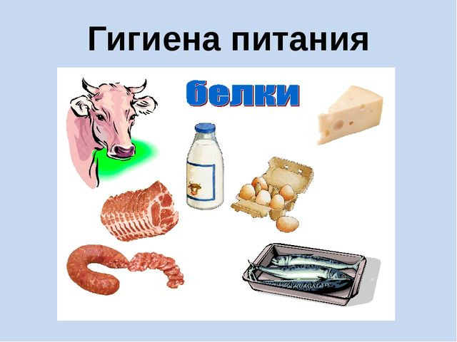 Гигиена питания