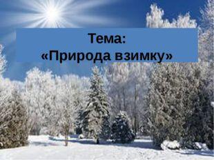 Тема: «Природа взимку»