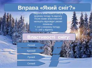 Вправа «Який сніг?» Виділіть властивості снігу в морозну погоду та відлигу.