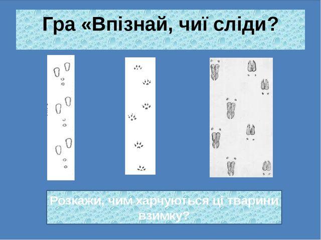Гра «Впізнай, чиї сліди? Розкажи, чим харчуються ці тварини взимку?