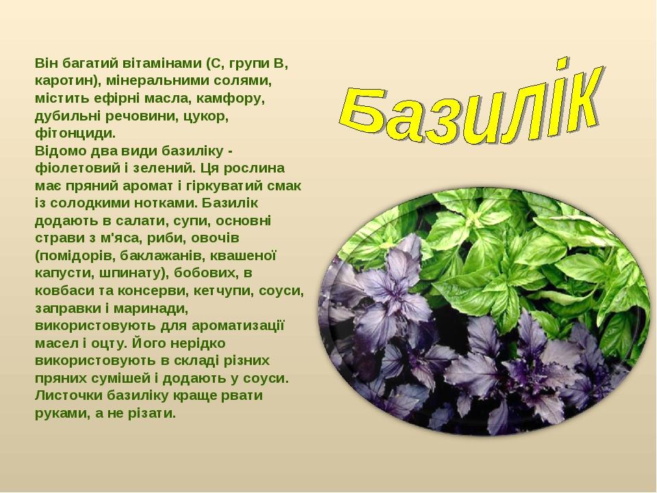 Він багатий вітамінами (С, групи В, каротин), мінеральними солями, містить еф...