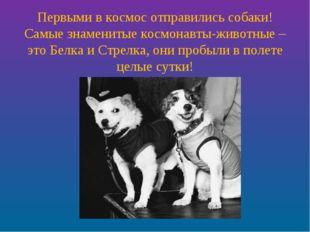 Первыми в космос отправились собаки! Самые знаменитые космонавты-животные – э