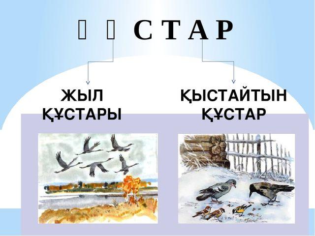 Қ Ұ С Т А Р ҚЫСТАЙТЫН ҚҰСТАР ЖЫЛ ҚҰСТАРЫ