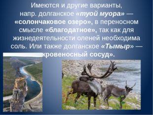 Имеются и другие варианты, напр.долганское«туой муора»— «солончаковое озер