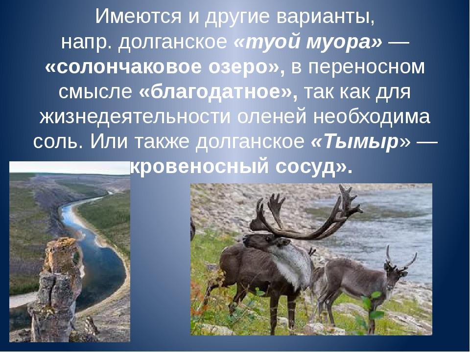 Имеются и другие варианты, напр.долганское«туой муора»— «солончаковое озер...