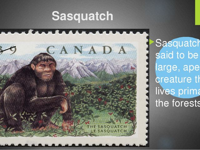Sasquatch Sasquatch is said to be a large, ape-like creature that lives prima...