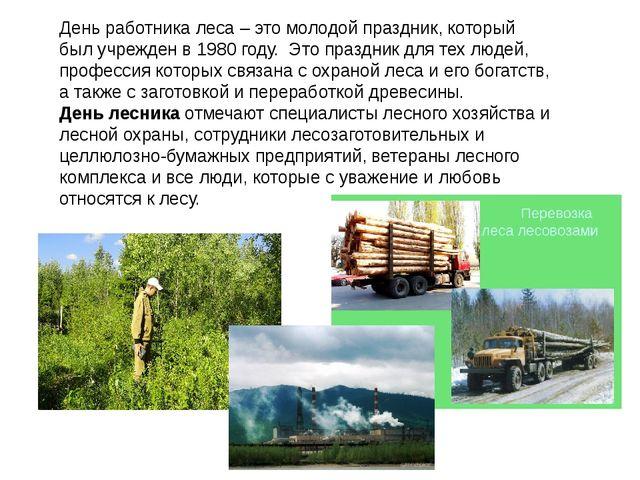 День работника леса – это молодой праздник, который был учрежден в 1980 году....