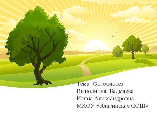 Тема: Фотосинтез Выполнила: Бадмаева Иляна Александровна МКОУ «Элвгинская СОШ»