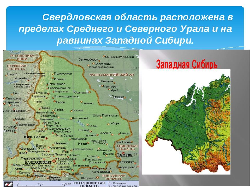 Свердловская область расположена в пределах Среднего и Северного Урала и на...