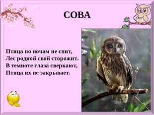 СОВА Птица по ночам не спит, Лес родной свой сторожит. В темноте глаза сверка
