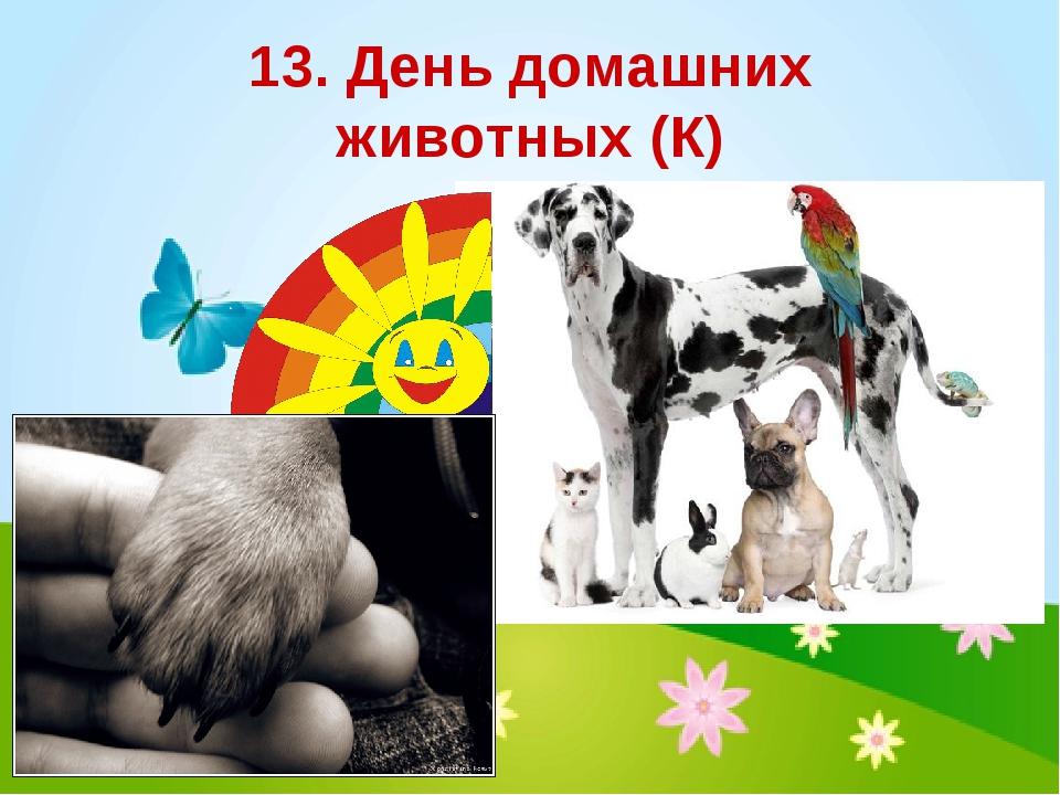 13. День домашних животных (К)