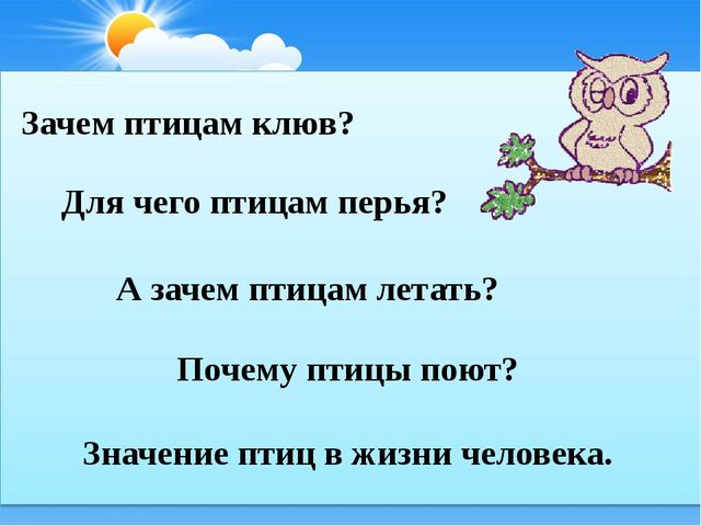 Зачем птицам клюв? А зачем птицам летать? Почему птицы поют? Для чего птицам...