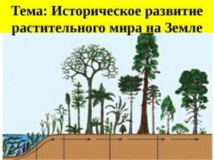 Тема: Историческое развитие растительного мира на Земле