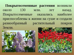 Покрытосеменные растения возникли около 130 млн. лет назад. Покрытосеменные