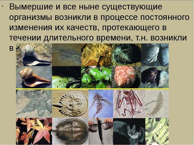 Вымершие и все ныне существующие организмы возникли в процессе постоянного и...
