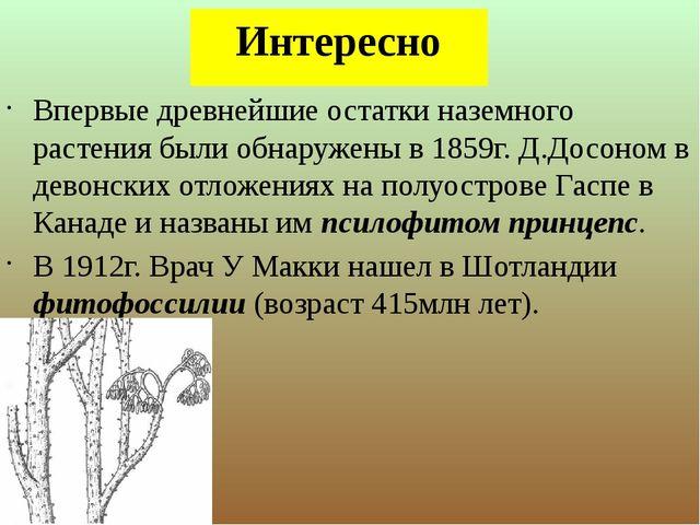 Интересно Впервые древнейшие остатки наземного растения были обнаружены в 185...