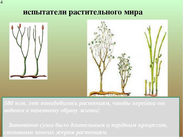 испытатели растительного мира 580млн. лет понадобилось растениям, чтобы пере...