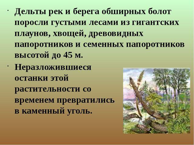 Дельты рек и берега обширных болот поросли густыми лесами из гигантских плау...